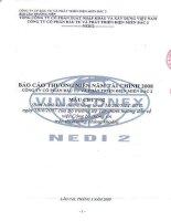 Báo cáo thường niên năm 2008 - Công ty Cổ phần Đầu tư Phát triển điện Miền Bắc 2