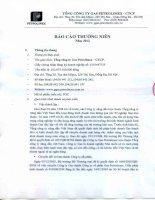 Báo cáo thường niên năm 2012 - Tổng Công ty Gas Petrolimex-CTCP