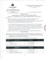 Nghị quyết Đại hội cổ đông thường niên - Công ty cổ phần Đầu tư và Phát triển Đô thị Long Giang