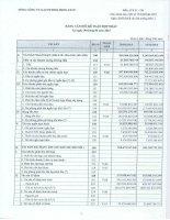 Báo cáo tài chính hợp nhất quý 2 năm 2015 - Tổng Công ty Gas Petrolimex-CTCP