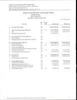 Báo cáo tài chính hợp nhất quý 4 năm 2012 - Công ty Cổ phần Đường Ninh Hòa