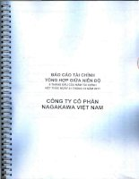Báo cáo tài chính công ty mẹ quý 2 năm 2011 (đã soát xét) - Công ty cổ phần Nagakawa Việt Nam