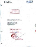 Báo cáo tài chính năm 2011 (đã kiểm toán) - Tổng Công ty cổ phần Bảo hiểm Petrolimex