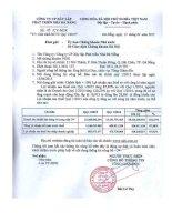 Báo cáo tài chính quý 1 năm 2015 - Công ty Cổ phần Xây lắp Phát triển Nhà Đà Nẵng