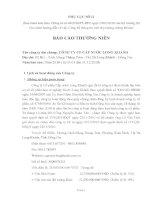 Báo cáo thường niên năm 2010 - CTCP Cấp nước Long Khánh