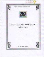 Báo cáo thường niên năm 2012 - Công ty Cổ phần Ngân Sơn