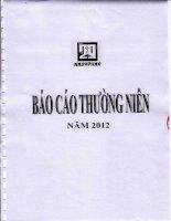 Báo cáo thường niên năm 2012 - CTCP Dược phẩm 2-9 TP. Hồ Chí Minh