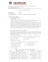 Báo cáo thường niên năm 2009 - Công ty Cổ phần Tập đoàn PAN