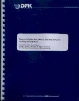 Báo cáo tài chính quý 2 năm 2015 (đã soát xét) - Công ty cổ phần Đầu tư Phát triển Xây dựng và Thương mại Việt Nam
