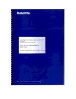 Báo cáo tài chính hợp nhất năm 2009 (đã kiểm toán) - Tổng Công ty Cổ phần Dịch vụ Tổng hợp Dầu khí