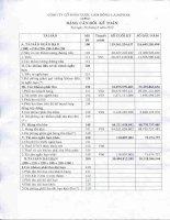 Báo cáo tài chính quý 2 năm 2012 - Công ty Cổ phần Dược Lâm Đồng - Ladophar