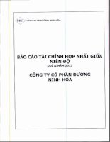 Báo cáo tài chính hợp nhất quý 2 năm 2013 - Công ty Cổ phần Đường Ninh Hòa