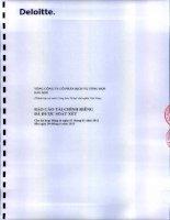 Báo cáo tài chính công ty mẹ quý 2 năm 2013 (đã soát xét) - Tổng Công ty Cổ phần Dịch vụ Tổng hợp Dầu khí