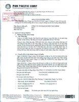 Báo cáo thường niên năm 2011 - Công ty Cổ phần Tập đoàn PAN