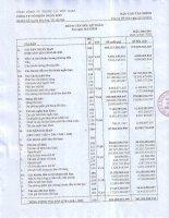 Báo cáo tài chính quý 4 năm 2010 - Công ty Cổ phần Ngân Sơn