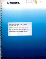 Báo cáo tài chính năm 2015 (đã kiểm toán) - Công ty cổ phần Dịch vụ Vận tải Dầu khí Cửu Long