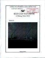 Báo cáo tài chính quý 2 năm 2012 - Công ty Cổ phần Cảng Đồng Nai