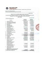 Báo cáo tài chính hợp nhất quý 3 năm 2009 - Công ty Cổ phần Tập đoàn PAN
