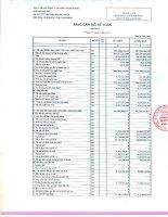 Báo cáo tài chính quý 1 năm 2013 - Công ty cổ phần Chứng khoán MayBank Kim Eng