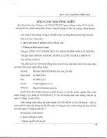 Báo cáo thường niên năm 2013 - Công ty Cổ phần Dịch vụ Hàng không Sân bay Nội Bài