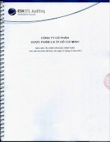 Báo cáo tài chính năm 2013 (đã kiểm toán) - CTCP Dược phẩm 2-9 TP. Hồ Chí Minh