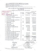 Báo cáo KQKD hợp nhất quý 2 năm 2011 - Công ty cổ phần Đầu tư và Phát triển Đô thị Long Giang