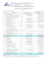 Báo cáo tài chính năm 2007 (đã kiểm toán) - Công ty cổ phần Đầu tư và Phát triển Đô thị Long Giang