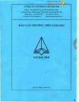 Báo cáo thường niên năm 2012 - Công ty Cổ phần Licogi 166