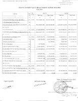 Báo cáo KQKD công ty mẹ quý 4 năm 2010 - Công ty Cổ phần Phát triển Đô thị Từ Liêm