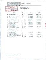 Báo cáo tài chính công ty mẹ quý 2 năm 2012 - Công ty Cổ phần Tập đoàn PAN