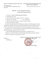 Báo cáo tài chính hợp nhất năm 2015 (đã kiểm toán) - Công ty cổ phần Nagakawa Việt Nam