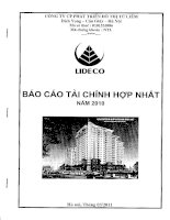 Báo cáo tài chính hợp nhất năm 2010 - Công ty Cổ phần Phát triển Đô thị Từ Liêm