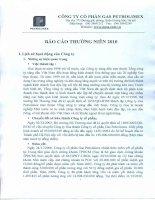 Báo cáo thường niên năm 2010 - Tổng Công ty Gas Petrolimex-CTCP