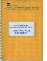 Báo cáo tài chính năm 2009 (đã kiểm toán) - Công ty Cổ phần Bột giặt Lix