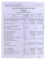 Báo cáo tài chính hợp nhất quý 1 năm 2010 - Công ty Cổ phần Đầu tư Năm Bảy Bảy