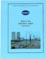 Báo cáo thường niên năm 2015 - Công ty Cổ phần Đầu tư Cầu đường CII