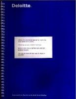 Báo cáo tài chính năm 2009 (đã kiểm toán) - Công ty cổ phần Dịch vụ Vận tải Dầu khí Cửu Long