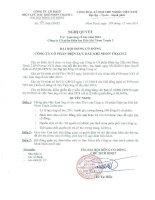 Nghị quyết Đại hội cổ đông bất thường - Công ty Cổ phần Điện lực Dầu khí Nhơn Trạch 2