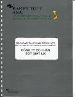 Báo cáo tài chính năm 2014 (đã kiểm toán) - Công ty Cổ phần Bột giặt Lix