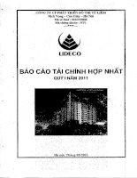 Báo cáo tài chính hợp nhất quý 1 năm 2011 - Công ty Cổ phần Phát triển Đô thị Từ Liêm