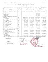 Báo cáo KQKD hợp nhất quý 2 năm 2011 - Tổng Công ty Cổ phần Dịch vụ Tổng hợp Dầu khí