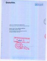 Báo cáo tài chính công ty mẹ quý 2 năm 2012 (đã soát xét) - Tổng Công ty cổ phần Bảo hiểm Petrolimex
