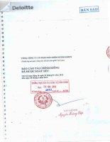 Báo cáo tài chính công ty mẹ quý 2 năm 2013 (đã soát xét) - Tổng Công ty cổ phần Bảo hiểm Petrolimex