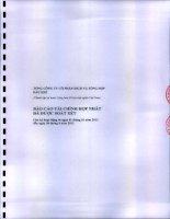 Báo cáo tài chính hợp nhất quý 2 năm 2013 (đã soát xét) - Tổng Công ty Cổ phần Dịch vụ Tổng hợp Dầu khí