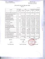 Báo cáo tài chính quý 4 năm 2011 - Công ty Cổ phần Cảng Đồng Nai