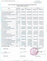 Báo cáo KQKD hợp nhất quý 2 năm 2012 - Công ty Cổ phần Phát triển Đô thị Từ Liêm