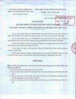 Nghị quyết Đại hội cổ đông thường niên - Công ty cổ phần Đầu tư Phát triển Xây dựng và Thương mại Việt Nam