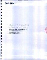 Báo cáo tài chính hợp nhất năm 2013 (đã kiểm toán) - Tổng Công ty Cổ phần Dịch vụ Tổng hợp Dầu khí