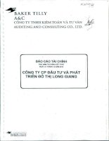 Báo cáo tài chính công ty mẹ năm 2010 (đã kiểm toán) - Công ty cổ phần Đầu tư và Phát triển Đô thị Long Giang