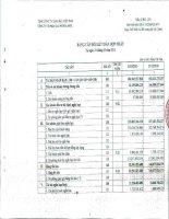Báo cáo tài chính hợp nhất quý 1 năm 2011 - Tổng Công ty Gas Petrolimex-CTCP